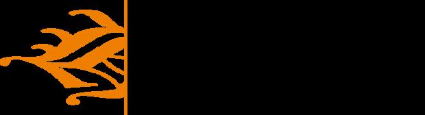 Hanzehogeschool – Zpannend Zernike