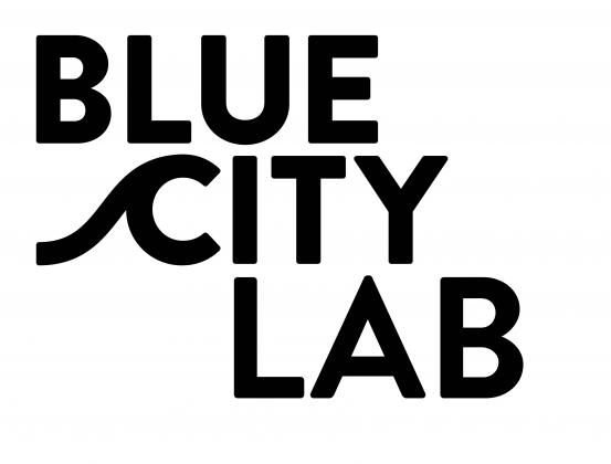BlueCity Lab