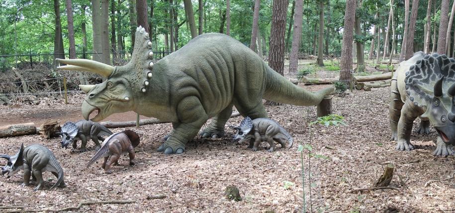 Ontdek de wereld van de dinosaurus